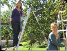 Volunteer gleaners