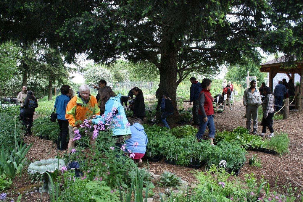 Family Garden Days, 2014